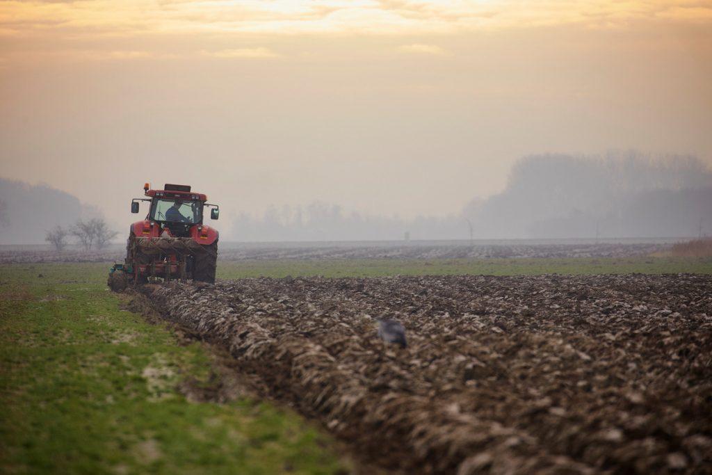 Lever boeren niet langer uit aan de lage prijzen op de wereldmarkt